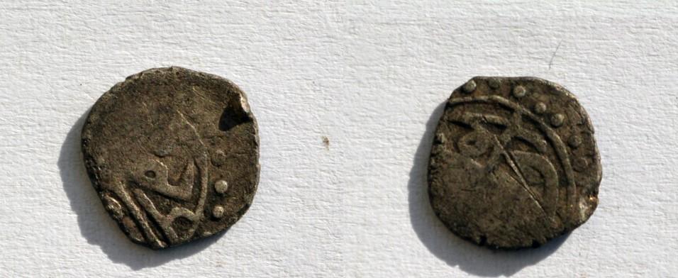 accea turceasca (Large)